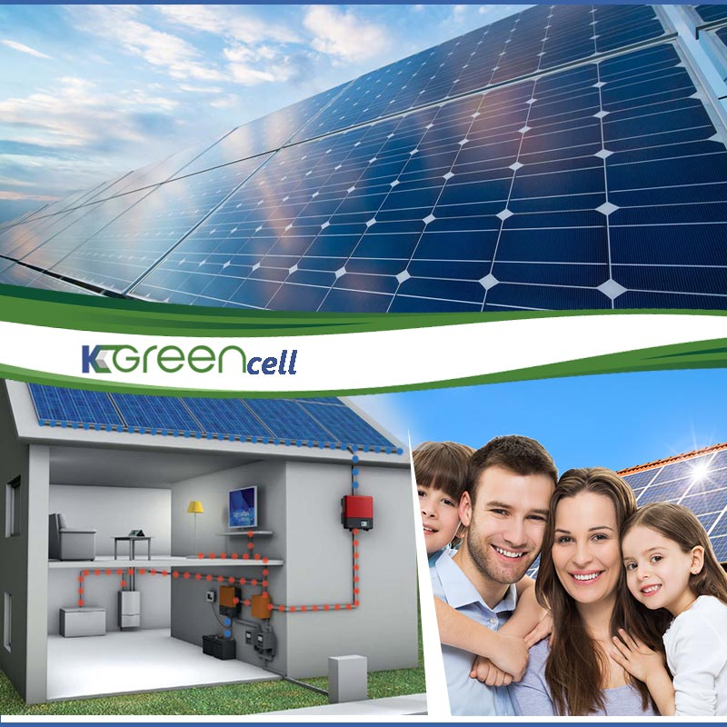 Kgreen Cell Article
