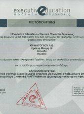 Certificate 12 CQI
